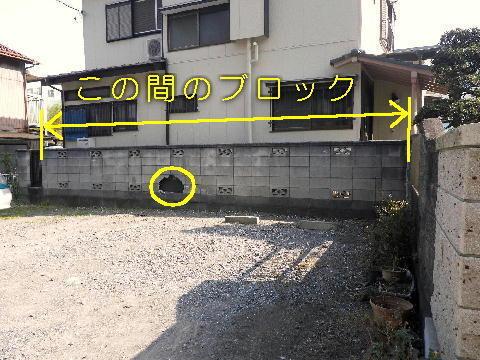 150523_03.jpg